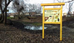 Revitalizace mrtvého ramene řeky Morava